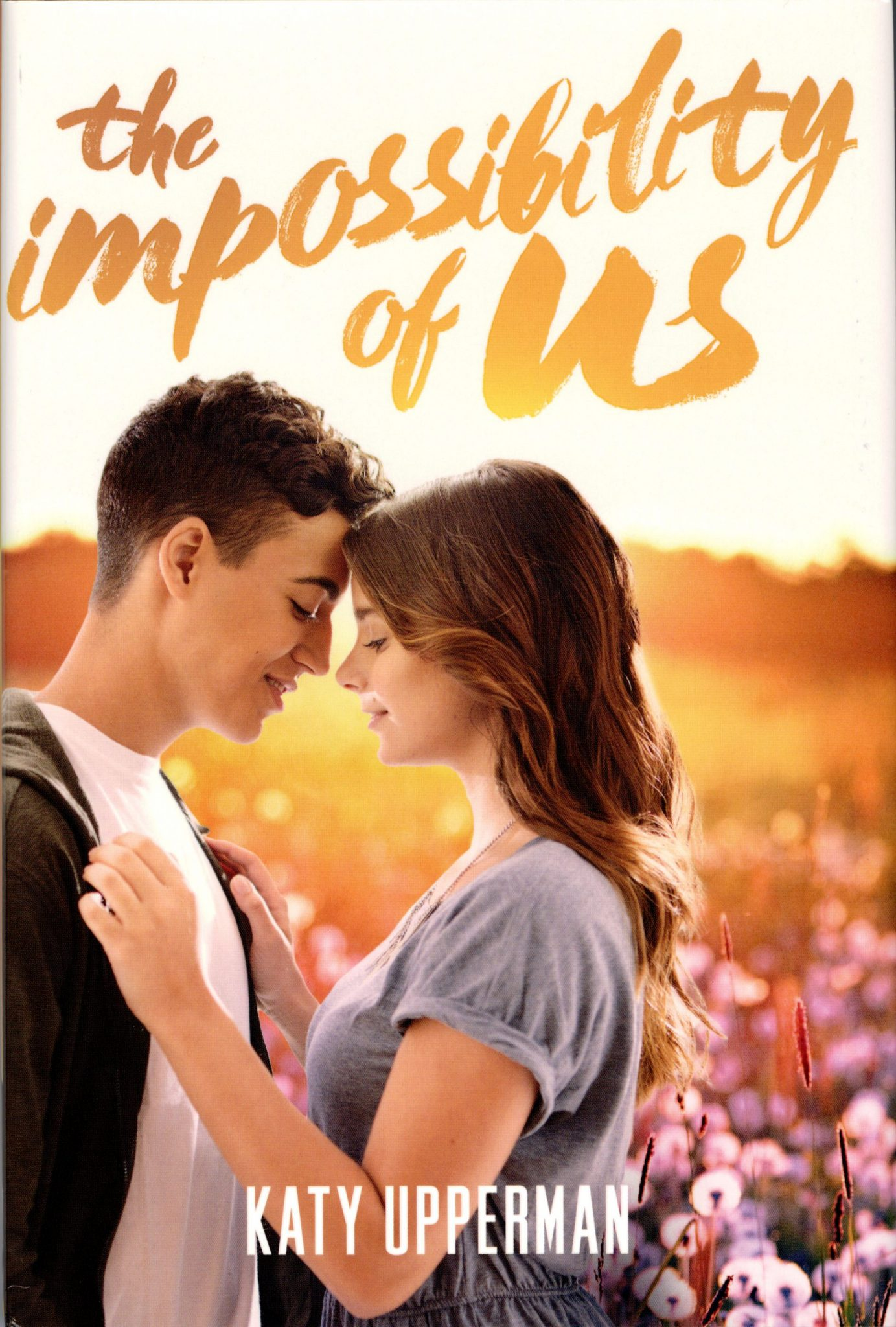 The Impossibility of Us cover
