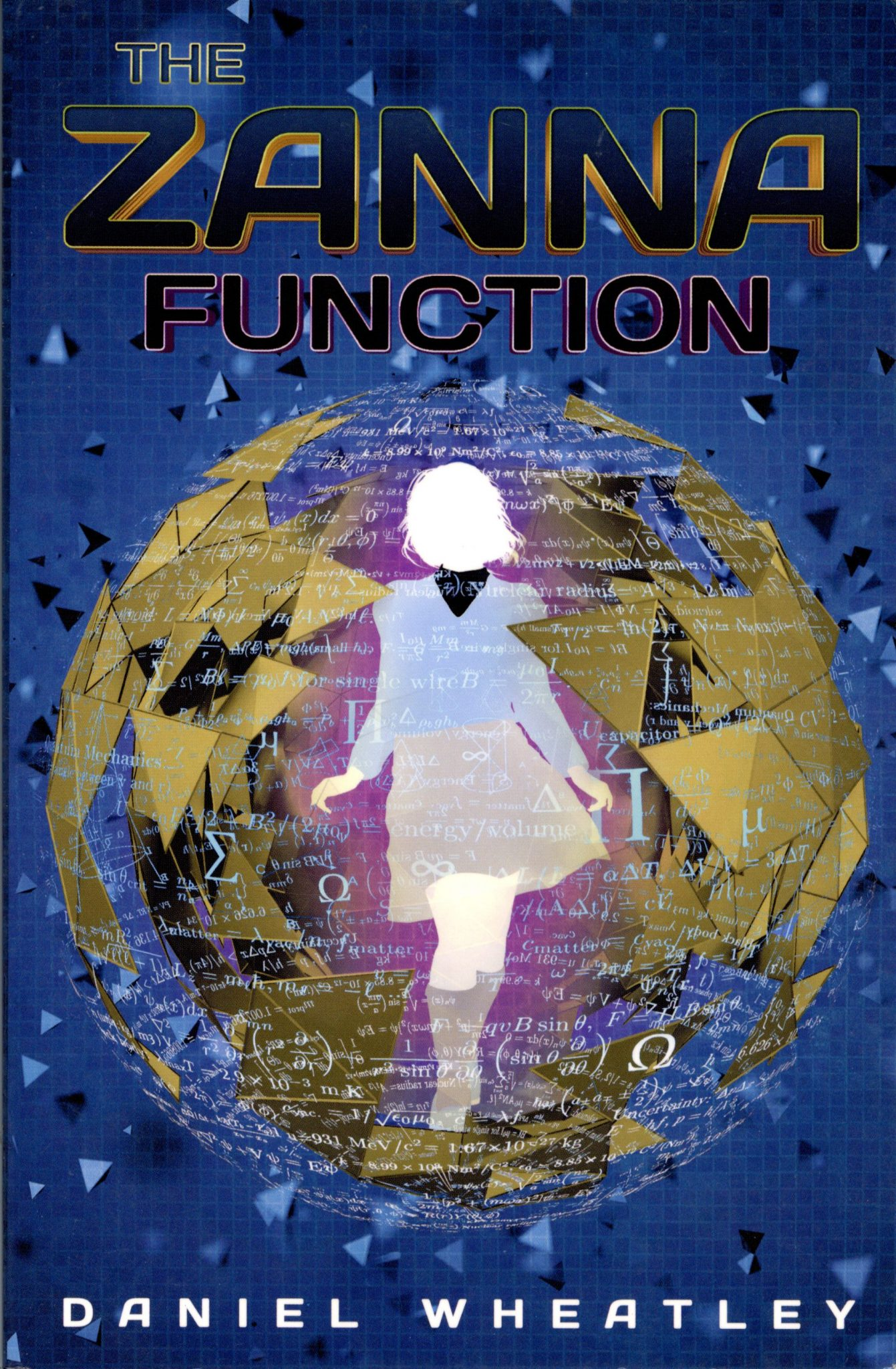 The Zanna Function cover