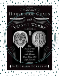 The cover of the nonfiction book, Horseshoe Crabs and Velvet Worms, featuring the topside and underside of a horseshoe crab.
